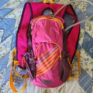 Nathan 2L water pack
